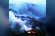 آتشسوزی گسترده در جنگلهای «فتحیه» ترکیه