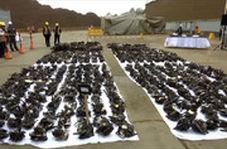 انهدام ۱۱.۰۰۰ اسلحه در پرو