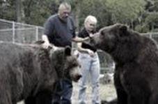 علاقه باورنکردنی ۲ خرس غول پیکر به یک خانواده
