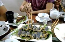 پخت غذا با مارهای جنگلی!