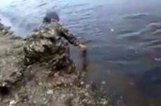 تنها رودخانهای که با دست خالی از آن ماهی میگیرید