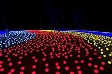 جشنواره فانوسهای رنگارنگ به مناسبت سال نو چینی