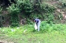اقدام جالب و آموزنده یک شهروند طبیعت دوست