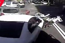 صحنه وحشتناکی که راننده در یک چهار راه رقم زد!