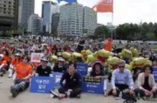تظاهرات ضد «سگ خوری» در کره جنوبی
