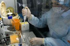 اخبار امیدوارکننده سازمان جهانی بهداشت درباره واکسن کرونا