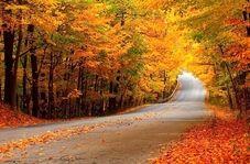 مناظری زیبا از طبیعت پاییزی گرگان