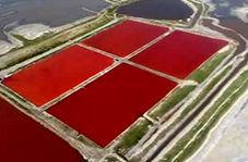 تغییر رنگ دریاچه نمک از آبی به قرمز