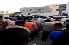 اعتصاب و اعتراض کارگران عربستانی به دلیل دریافت نکردن حقوق