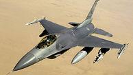 پرنده ای که جنگنده آمریکایی را در آسمان منهدم کرد