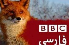 مچگیری کارشناس بیبیسی، دروغ مجری این شبکه را لو داد