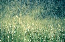 بارش شدید باران که مردم قم را غافلگیر کرد