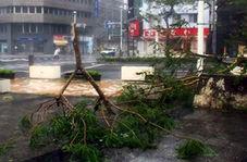 زلزله ای که برخی از مناطق ژاپن را به طور کامل ویران کرد!