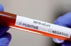 پادزهر ویروس مرگبار کرونا پیدا شد/ حقایقی جالب درباره پلاسمای خون بهبودیافتگان کرونا + فیلم
