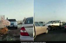 وحشت رانندگان از پرسه شیر سرگردان در جاده!+فیلم