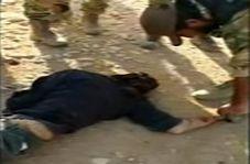 انتشار فیلم جنازههای اسیران سوری پس از اعدام توسط گروههای وابسته به ارتش ترکیه