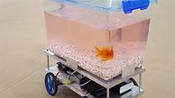 رباتی که راننده آن یک ماهی است!