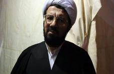 صحبتهای حجت الاسلام عالی پیرامون شور و شوق زائران راهپیمایی اربعین امسال