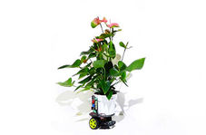 رباتی که هر گیاهی را آفتابگردان میکند