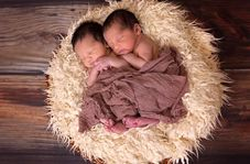 تولد دوقلوهای افسانهای در قزاقستان