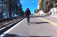 گوزنی که یک دوچرخه سوار را به طرز وحشتناکی واژگون کرد