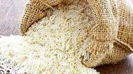 کاشت برنج هسته ای در شمال کشور