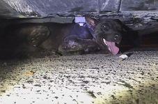 گیر افتادن سگ بیچاره در جایی که غیر قابل تصور است