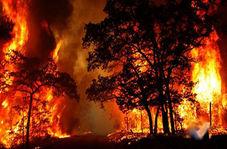 آتش سوزی گسترده در اسپانیا