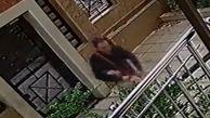 روشهای عجیب سرقت دزدان پایتخت