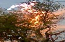 برق گرفتگی عجیب درخت