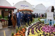 جشنواره گلهای زینتی در خمینی شهر