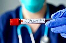 اختصاصی / هر آنچه که درباره ویروس کرونا و راه های پیشگیری از آن باید بدانید