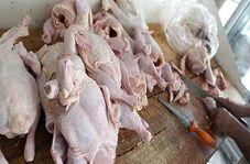 نکاتی ساده اما کاربردی در خرید مرغ/ آیا ارزش غذایی مرغ های درشت بیشتر است؟