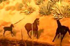 رفتار عاشقانه یک اسب در آتش سوزیهای کالیفرنیا