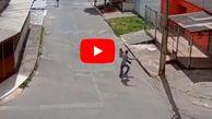 دختر دانشجوی رزمی کار سارق مسلح را فراری داد!