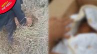 نجات باورنکردنی نوزاد زنده به گور شده در آخرین لحظات