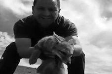 نجات جان یک روباه به دست راننده کامیون