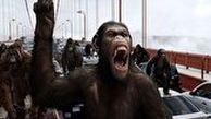 یورش میمونها به یک شهر و تصرف آن