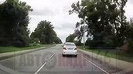 فرار لحظه آخری راننده از سقوط درخت
