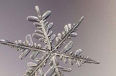 فردی که از دانههای برف عکس میگیرد + فیلم