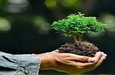 تولید کیسه های دوستدار محیط زیست!