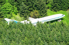 حمله ناگهانی مرغهای دریایی سبب فرود خطرناک هواپیما وسط مزرعه ای در روسیه شد