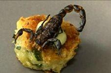 تزئین غذا با حشرات!